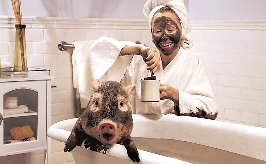 свинья в ванне с девушкой в маске