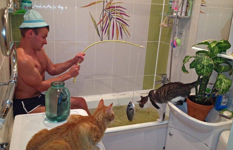 коты смотрят, как мужик ловит рыбу в ванне